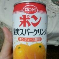 【日常】ポン 果実スパークリング【缶ジュース】