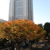 ほんのりと 秋