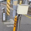西金沢駅の絶滅危惧種 北陸本線