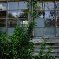 茨城県 大子町 上野宮小学校 再訪