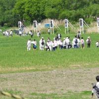 平成29年5月度 春日部大凧あげ祭り見学
