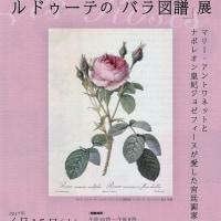 そごう美術館で、 『ルドゥーテの 「バラ図譜」 展』 を観ました。