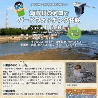 野鳥観察イベントのお知らせ