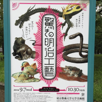 驚きの明治工芸 at 東京藝術大学美術館