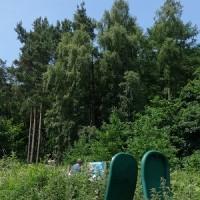 広大な森林の端っこをちょっと通って貯水池をめぐる、マカスフィールド・フォレストのお手軽ウォーク