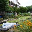 オープンガーデン(寺泊)
