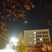 PM2,5濃い夜