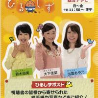 NHK静岡局 ベリカード 番宣ハガキ