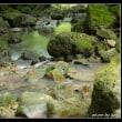 涼を求めて徳仙の滝