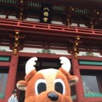11月2日 横浜 鎌倉 ツアー