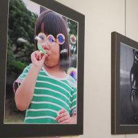 楽書き雑記「愛知県内高校生たちの第31回写真展」