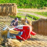 秋の信州・・・上田・・・稲倉の棚田・・・脱穀の風景