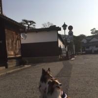 岡山 吉備路 ー 天空の城 備中松山城