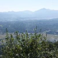 貴重な秋の好天を利用して破風山に登ってきました。