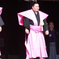 ぶらり旅・成田山新勝寺⑤節分会・二部、記念撮影(千葉県成田市)