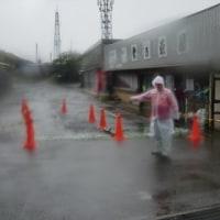 大島ウルトラランニング② レース