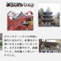 滋賀県・古刹の紅葉めぐり