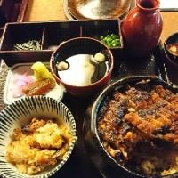 名古屋の鰻❗❗