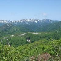 日本の世界遺産「白神山地 & 小笠原諸島」