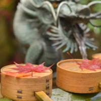 鍬山神社の紅葉(5)