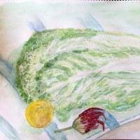 水彩画 白菜