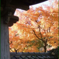 長寿寺(北鎌倉)