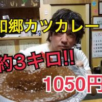 いなかめし和郷で宴会部長の営業でした