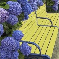 6月に紫陽花ひらく雨粒のまばたき触れて青深まりぬ