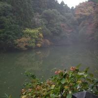 京都トレイル東コース