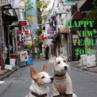 HAPPY NEW YEAR!! 2011