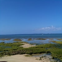 沖縄の風景 2017 1月