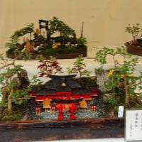 三渓園・小菊盆栽展