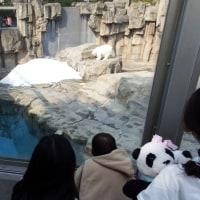 神戸旅行の画像たち・・・