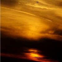 「太陽の暈と幻日」と「太陽柱の中を飛ぶANA」など