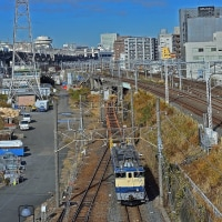 平成28年12月3日 懐かしの急行列車で行く東京おとな旅