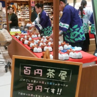 409煎 鹿児島百円茶屋