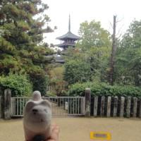 奈良ならこまま  in  斑鳩