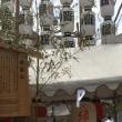 夏 祇園祭り