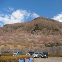 スポコミ・カワラ版 2月28日(火)仏滅