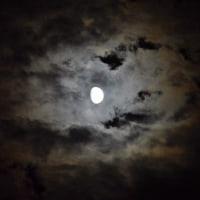 月はどっちに出ているの