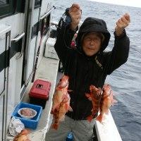 17日金曜 オキメバル30~71匹(^^)v