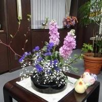市長室の花(2月13日)