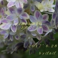 お誕生日おめでとう*
