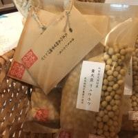 大潟村のリュウホウ大豆
