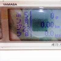 2017.05.23 YAMASAが