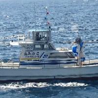 6月15日 とさか海苔販売