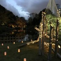 竹あかりと自然が織りなす幻想的な世界