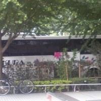 『SAKURA Express プレミアム(2×1)』の衝撃