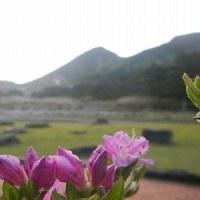 5月15日(月)のえびの高原