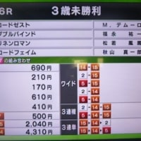 ロードゼスト:嬉しい未勝利戦勝利!阪神芝2400!!